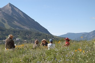 Wildflower viewing                  photo Chris Ladoulis